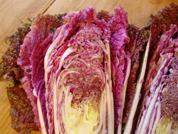 Chinese cabbage Scarlette halved - showing it's stunning heart