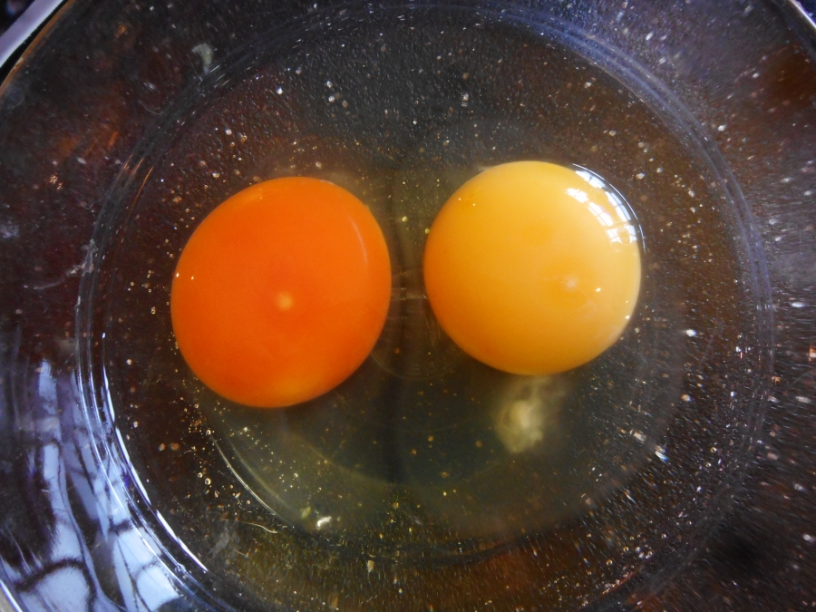The difference feeding daily green food makes. Compare one of our eggs on the left, with a shop-bought organic egg on right