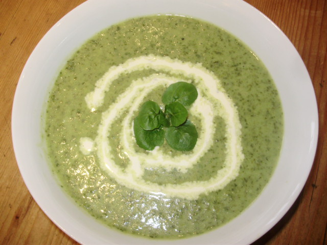 8a. Cream of Watercress soup, garnished with a swirl of cream and some tiny watercress leaves