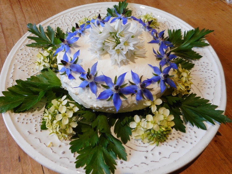 Kefir Curd Cheese decorated with herbs and edible flowers